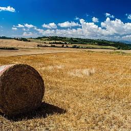 landscape lanscapes tuscany summer hills