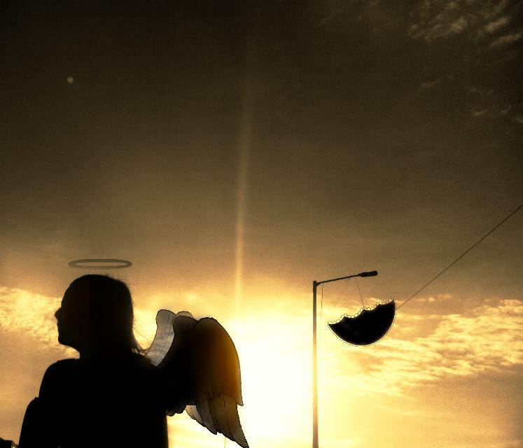 #wings#fantasy#sunset#photography#art#clipart#wapwings#selfieshadow#umbrella#rays#lensflare#paphotochallenge