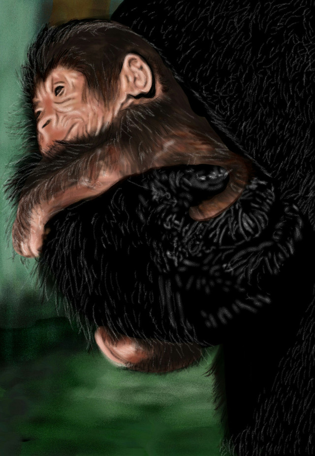 #Wdphands #Wdpyearofthemonkey (I know, I know..but let's just pretend I do not, and these are monkeys) 😂😂 #Mommy  #gorilla holding her  #baby  Sidenote: I should always do blurry backrounds, it's just.. so much better    #petsandanimals #love  #Digitaldrawing