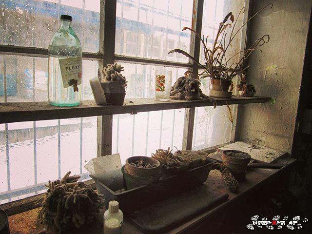 HITCHCOCK SERIE 👤 Das Fenster zum Hof - Rear window  #throughmywindow #vergessener #verlassener #Ort #Ruine #lost #places #urbex #urban #exploring #rotten #abandoned #place #oldphoto #photography #retro #vintage #emotions  #colorful #UrbanExploration #Stadterkundung #UrbanExploring #UrbanExplorer #window #Fenster #colorful
