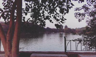 ilovemyclick lakeview