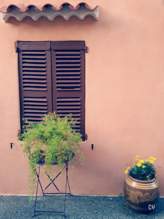 #Var #travel #photography #emotions #flower