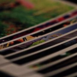 stripes photographs macro