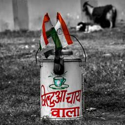 republicday india muzaffarpur bihar pushpam