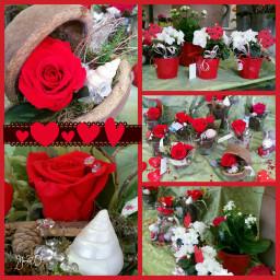 collage valentinsday flower flowershop red
