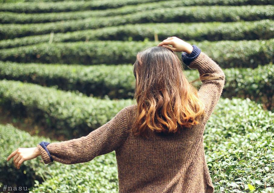 Somewhere.... #tea #nasu22 #nature #freetoedit #photography #vintage #travel #TET