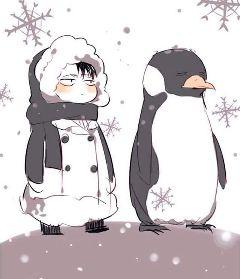 attackontitan shinjekinokyojin leviackerman pinguin
