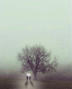 freetoedit people suicide hangout tree