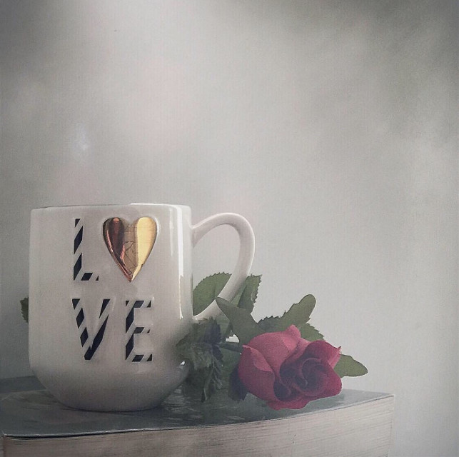 You have to learn to get up from the table when love is no longer being served #love #interesting #coffeecup