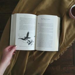 fairytale books flatlay photography story