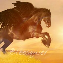 horse sun assembly freetoedit cute