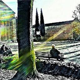 sunnyeffect interesting italy verona benches