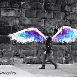 streetphotography wings graffiti nyc harlem