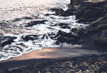 beach seaside sea shore rocks