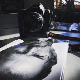 camera canon 7d stevejobs book