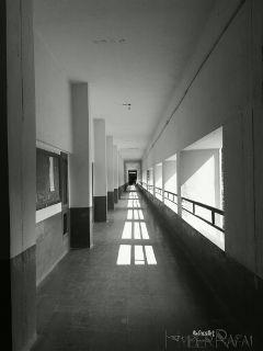 blackandwhite light photography freetoedit