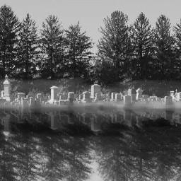 mirror cemetery graveyard trees fog