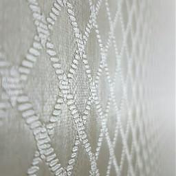 paphotochallenge texture tiltshift macro photography