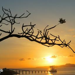 nature photography summer sunrise landscape